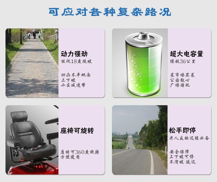 金百合DB-12电动代步车大容量电池图片